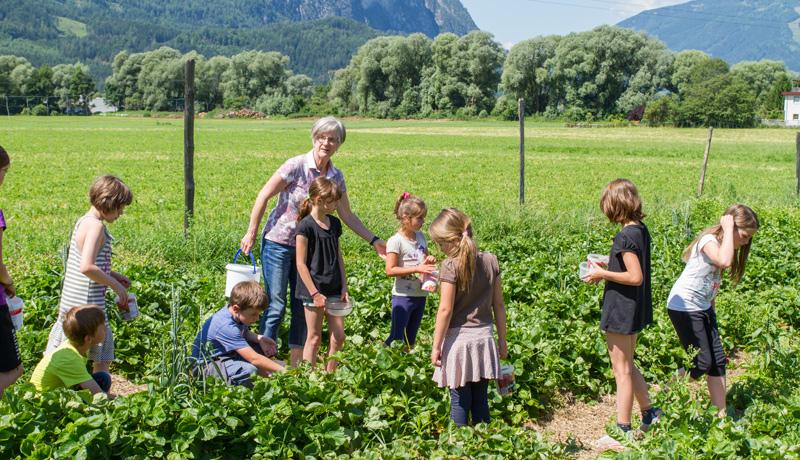 volksschule-iselsberg-gal5