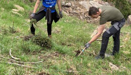 Bäume_pflanzen_Zukunft Wald_c_Jungbauernschaft Landjugend Osttirol1