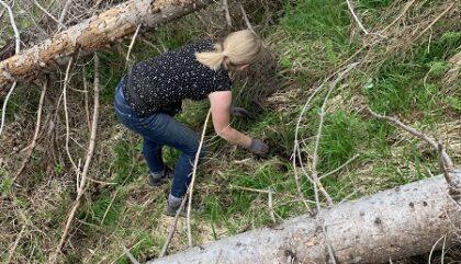 Bäume_pflanzen_unwegsames_Gelände_Zukunft_Wald_c_Jungbauernschaft Landjugend Osttirol